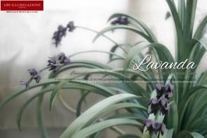 Lampadario in ferro battuto con fiori di lavanda